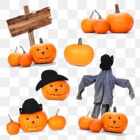 Halloween - Halloween Jack-o'-lantern Pumpkin Holiday PNG
