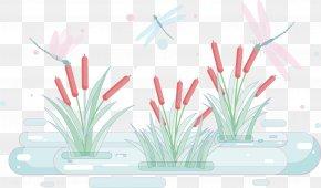 Vector Plant - Typha Orientalis Euclidean Vector Wetland PNG