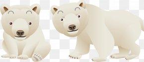 Bear - Polar Bear Carnivora Clip Art PNG