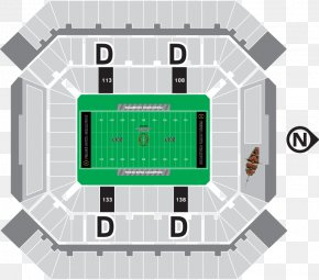 Stadium Sports Venue Ball Game Arena PNG