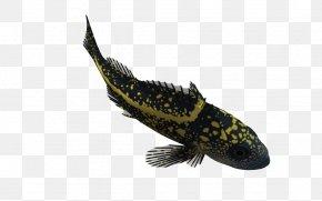 Biological 3d Cartoon Animals - 3D Computer Graphics Fish Clip Art PNG