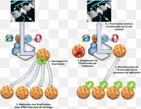Cookie. - HTTP Cookie Computer Science Evercookie Computer Virus Information PNG