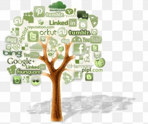 Social Media - Web Development Digital Marketing Social Media Web Design PNG