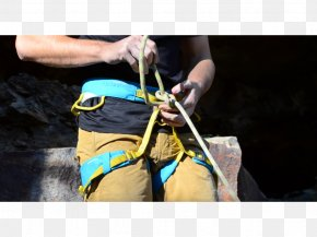 Abseiling Climbing Harnesses Belay & Rappel Devices Belaying Safety Harness PNG