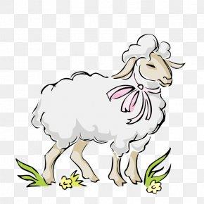 Little Sheep - Bighorn Sheep Clip Art PNG