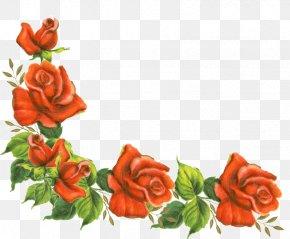 Rose Corner Cliparts - Borders And Frames Rose Flower Clip Art PNG