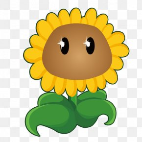 Sunflower - Plants Vs. Zombies 2: It's About Time Common Sunflower Sticker PNG