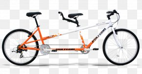 University Bicycle Center Bicycle Shop Cruiser Bicycle CyclingBicycle - UBC PNG