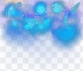 Fireworks - Turquoise Organism Wallpaper PNG
