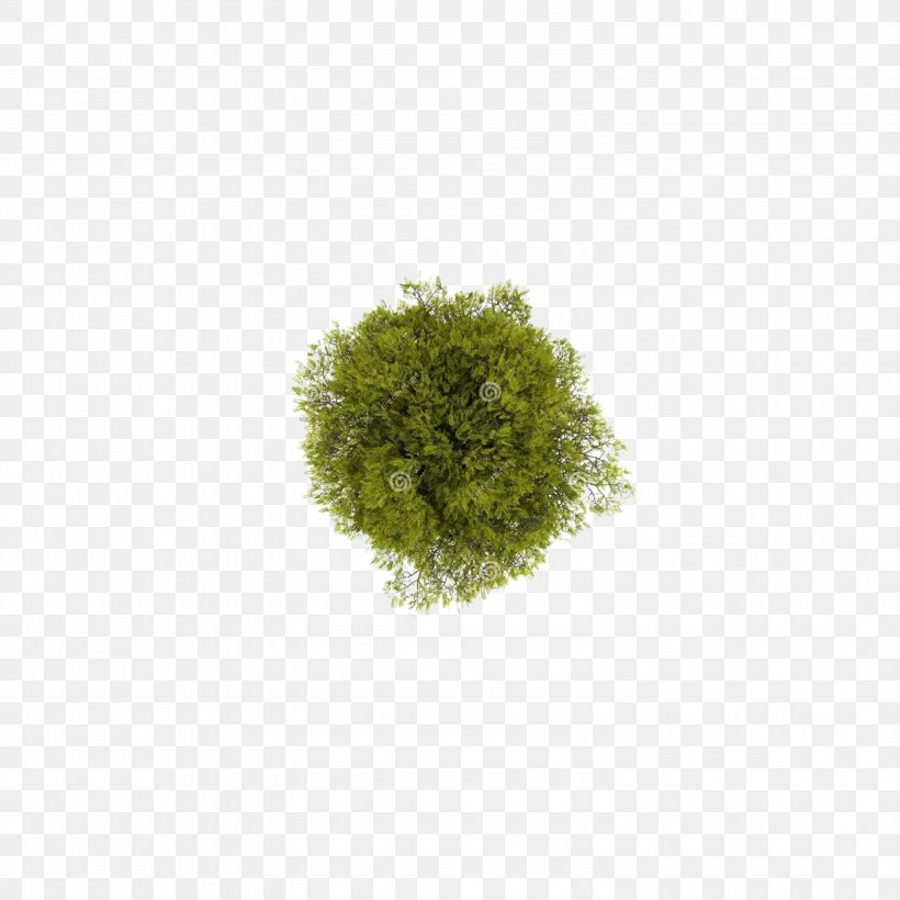 Tree Computer File, PNG, 3000x3000px, 2d Computer Graphics, Tree, Garden Furniture, Grass, Green Download Free
