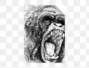 Monkey - Western Gorilla Ape Chimpanzee Primate Drawing PNG