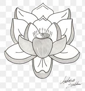 Lotus Tattoos Picture - Tattoo Nelumbo Nucifera Drawing Sketch PNG