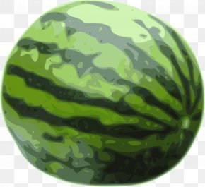 Watermelon Picture - Watermelon Clip Art PNG