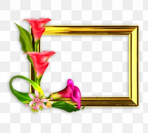 Mother's Day - Floral Design Mother's Day Picture Frames PNG