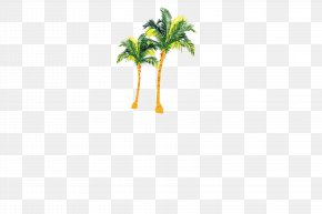 Coconut Tree - Coconut Tree Euclidean Vector PNG