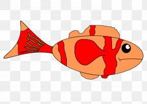 Fish - Fish Clip Art PNG