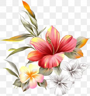 Watercolor Painting Flower - Painting Flower Picture Frames PNG