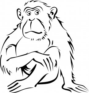 Monkey - Monkey Coloring Book Drawing Black-and-white Colobus Clip Art PNG