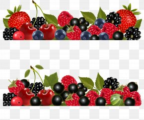 Blueberries - Huckleberry Fruit Blueberry PNG