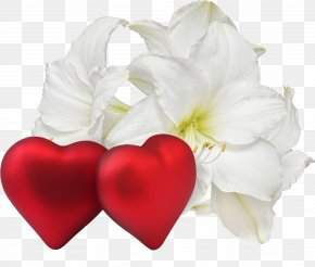 Lovely - Romance Flower Love Heart Desktop Wallpaper PNG