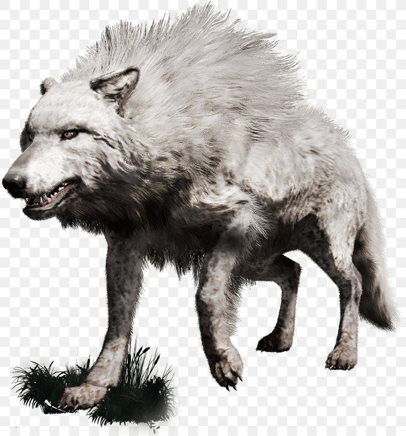 Far Cry Primal Gray Wolf Playstation 4 Far Cry 4 Png 811x880px