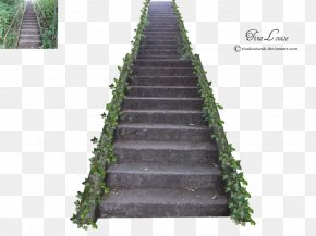 Stairs Photos - Stairs PNG