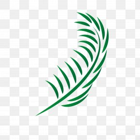 Vector Palm Leaves - Leaf Euclidean Vector PNG