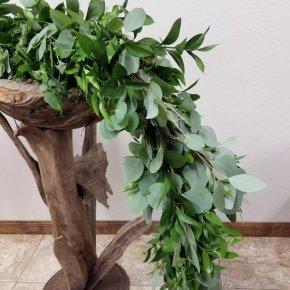 Eucalyptus - Ruscus Hypophyllum Plant Flower Gum Trees PNG