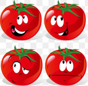 Tomatoes Expression Vector Material - Tomato Cartoon Vegetable Clip Art PNG