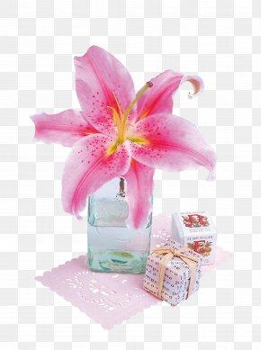 Pink Floral - Floral Design Flower Petal PNG