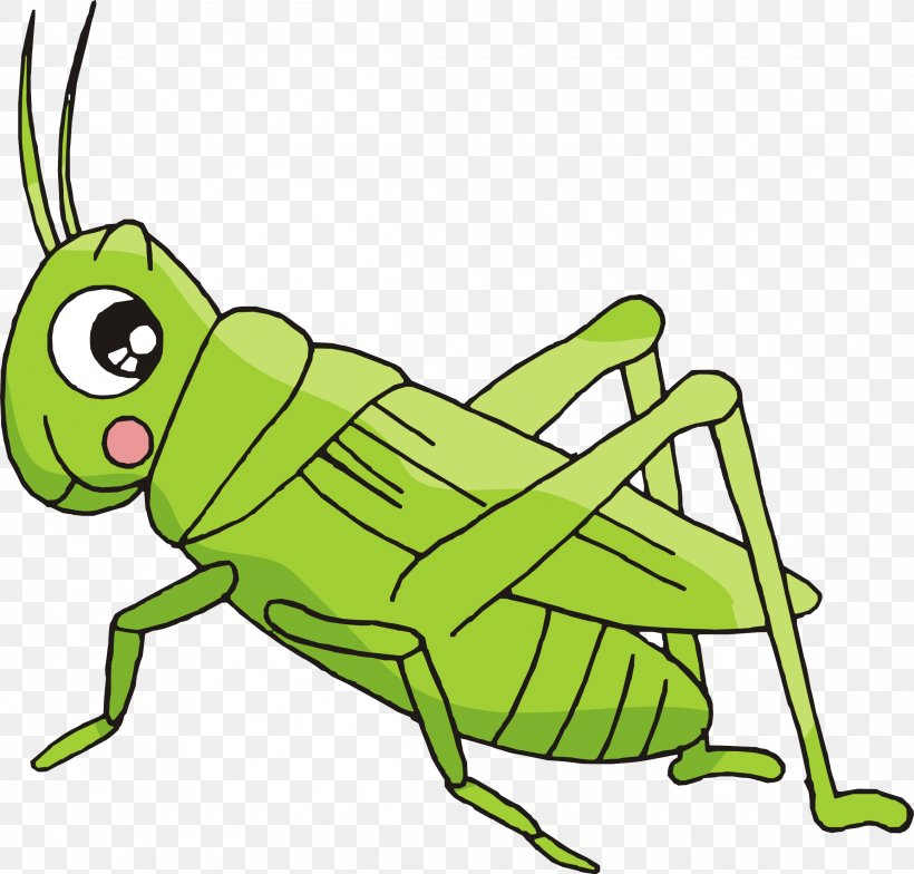 Cartoon Bush Crickets Insect, PNG, 2317x2216px, Insect, Amphibian, Area, Art, Artwork Download Free