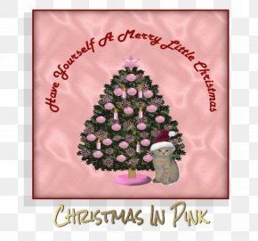 Christmas Angel - Christmas Tree Christmas Day Greeting & Note Cards Christmas Ornament Pink M PNG