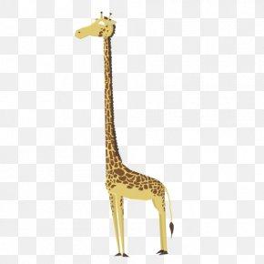 Giraffe Illustrations - Northern Giraffe Sloth Drawing Illustration PNG
