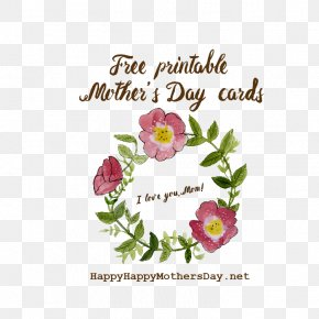 Mothers Day - Happy, Happy Mother's Day Greeting & Note Cards PNG