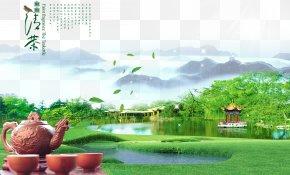 Green Tea Tea Industry Poster Material - Green Tea White Tea Tieguanyin Longjing Tea PNG