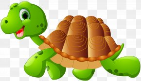 Turtle Cartoon Clip Art Image - Green Sea Turtle Cartoon Reptile Clip Art PNG