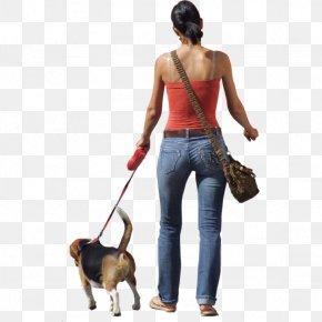 Photo Of People Walking - Dog Walking Clip Art PNG