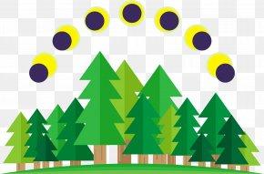 Pine Sun - Solar Eclipse Illustration PNG