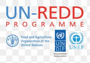 United Nations Framework Convention On Climate Change United Nations REDD Programme Reducing Emissions From Deforestation And Forest Degradation United Nations Development Programme PNG