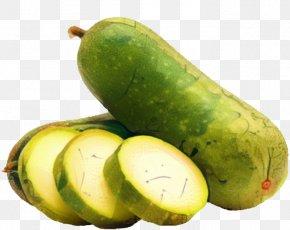 Fruit Spreewald Gherkins - Vegetables Cartoon PNG
