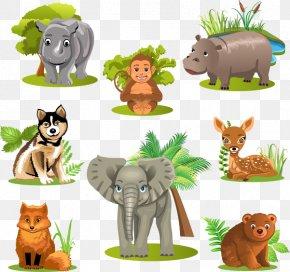 Variety Of Animal Vector Material, - Giant Panda Lion Raccoon Animal Variety PNG