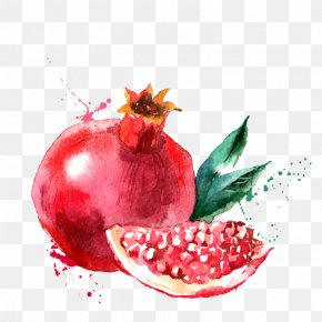 Painting - Watercolor Painting Drawing Fruit PNG