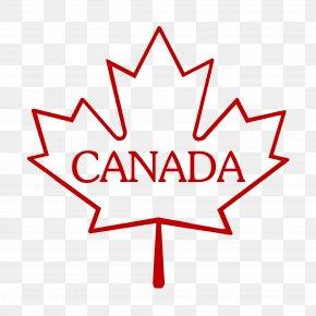 Canadian Maple Leaf - SideStix Ventures Inc. Grading In Education Maple Leaf School Test PNG