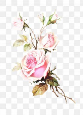 Pedicel Flower Arranging - Watercolor Pink Flowers PNG