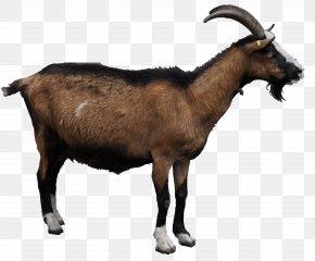 Goat File - Goat Clip Art PNG