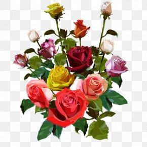 Flower - Garden Roses Cut Flowers Flower Bouquet Cabbage Rose PNG