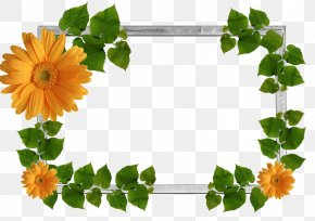 Green Frame - Picture Frames Display Resolution Image File Formats Clip Art PNG