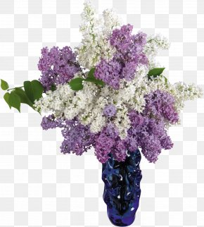 Lilac - Common Lilac Flower Vase Desktop Wallpaper PNG