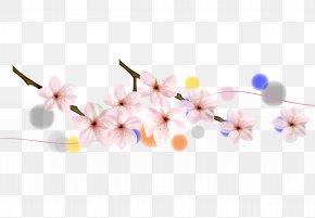 Sakura Cherry Petals And Foliage - Cherry Blossom Petal Flower PNG
