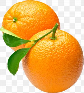 Orange Image, Free Download - Orange Wallpaper PNG